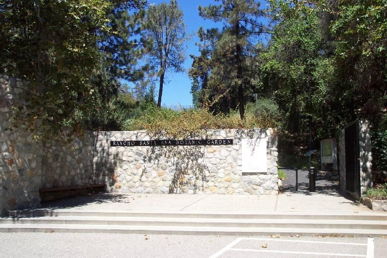 Rancho santa ana botanic garden - Rancho santa ana botanic garden wedding ...