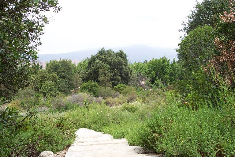 Rancho Santa Ana Botanic Garden Is Located At 1500 North College Avenue  Claremont Ca See Map
