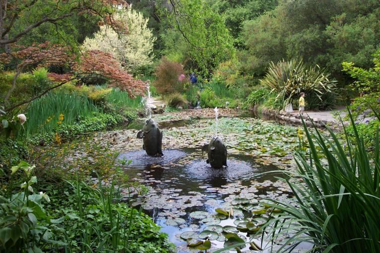 Descanso Gardens Letsgoseeit Com