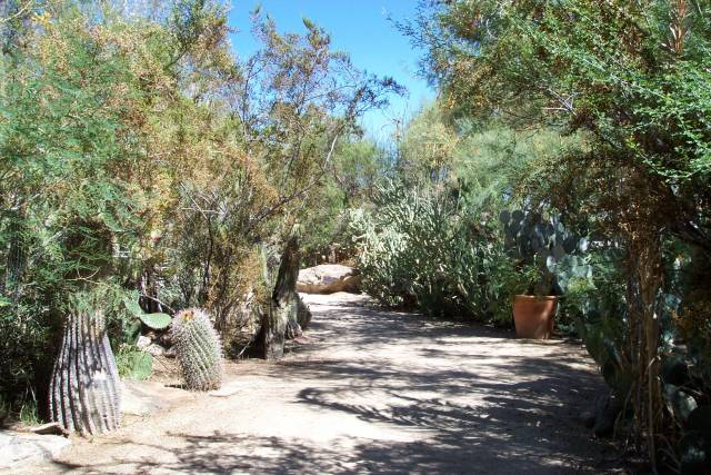 Gardens To Moorten Botanical Garden And Cactarium
