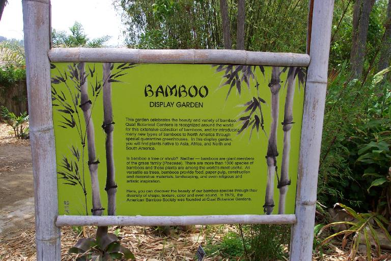 This Garden Celebrates The Beauty And Variety Of Bamboo. The San Diego Botanic  Garden Is Recognized Around The World For This Extensive Collection Of ...